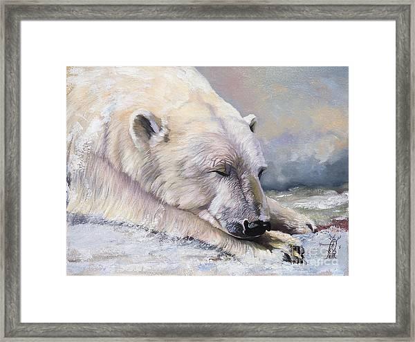 What Do Polar Bears Dream Of Framed Print