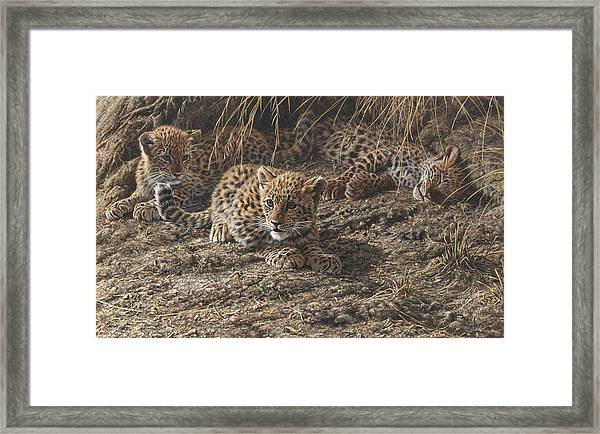 What Do You Hear? Framed Print