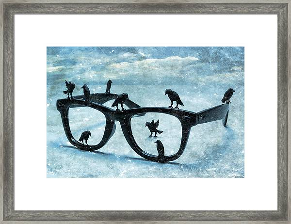 What The Crows Found Framed Print
