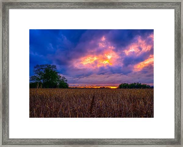 Wheat Field Sunset Framed Print