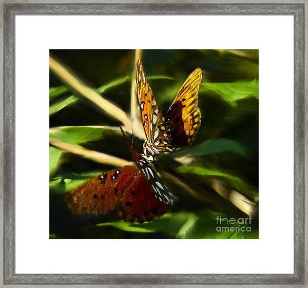 When Butterflies Kiss Framed Print
