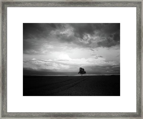 When Night Falls Framed Print