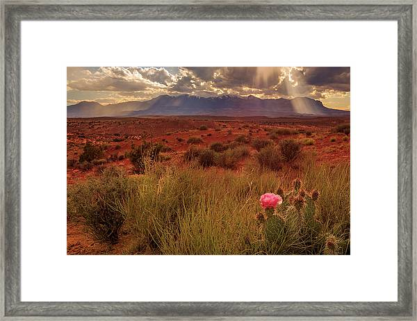When The Light Appears... Framed Print