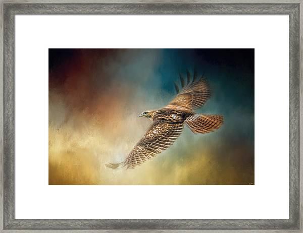 When The Redtail Flies At Sunset Hawk Art Framed Print