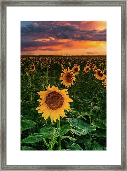 Framed Print featuring the photograph When The Sky Sings by John De Bord