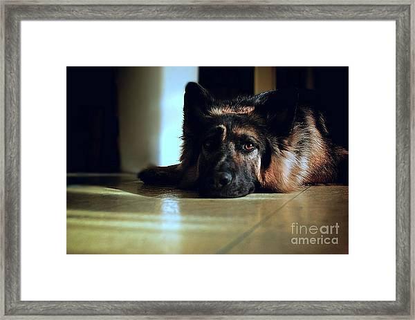 When Their Eyes Look At Your Soul Framed Print