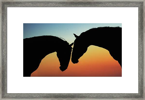 When Words Are Needless Framed Print
