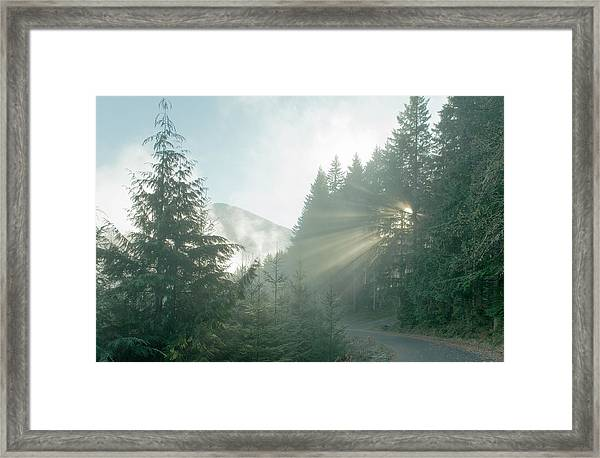 Where Will Your Road Take You? Framed Print