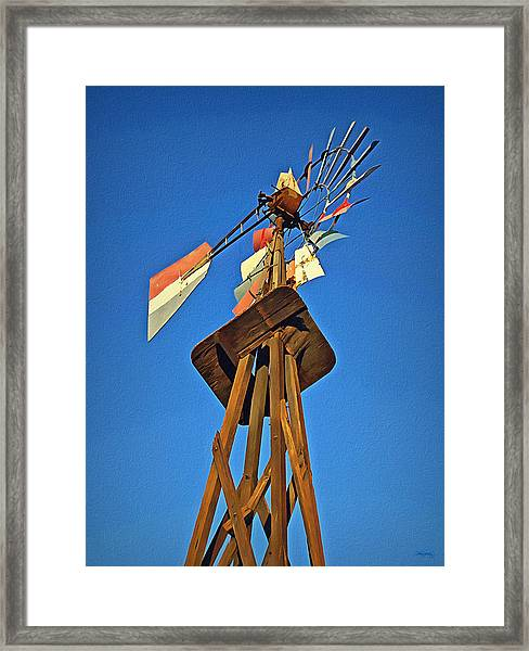 Which Way The Wind Blows Framed Print