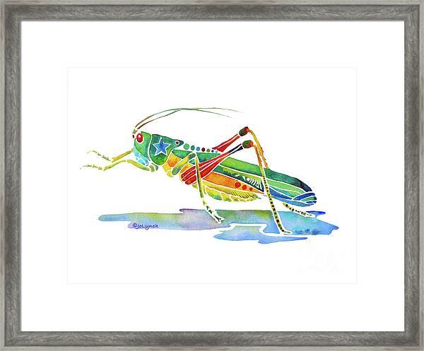 Whimsical Grasshopper  Framed Print