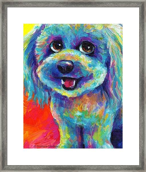 Whimsical Labradoodle Painting By Framed Print