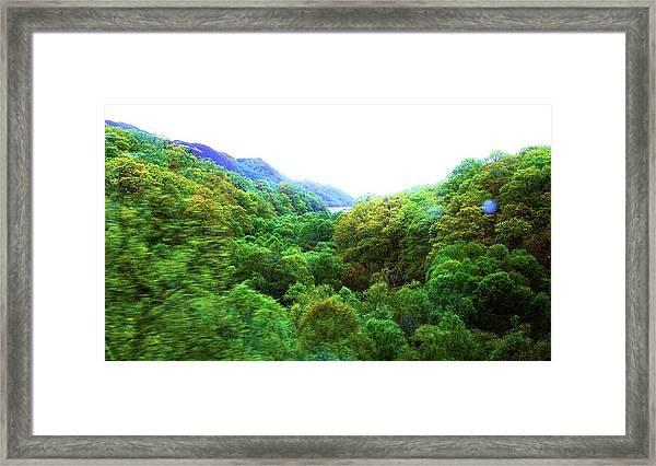 Whirl Framed Print