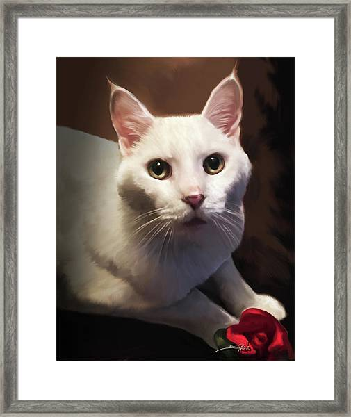 Whiskers And Rose Framed Print