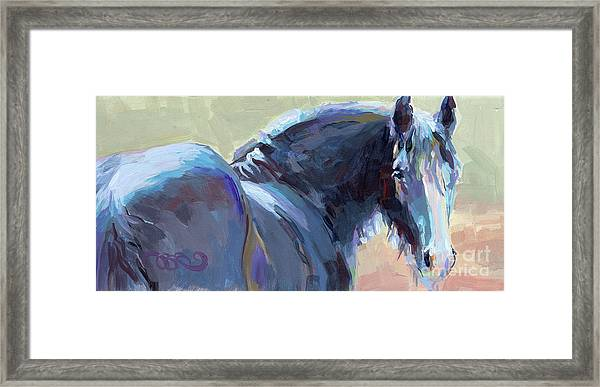 Whiskery Clyde Framed Print