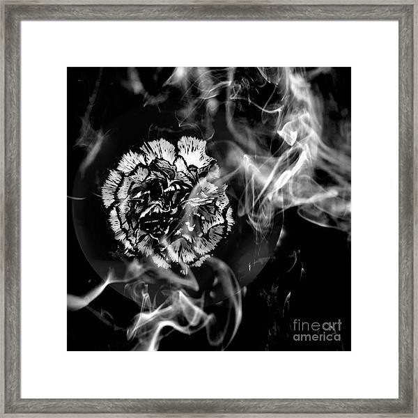 Whisper In The Dark Framed Print