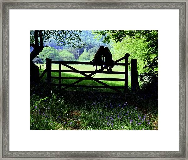 Best Friends On A Farm Gate In Devon Framed Print