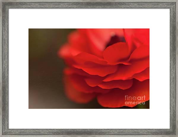Whispers Of Love Framed Print
