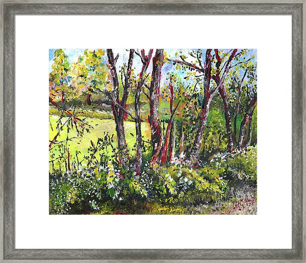 White And Yellow - An Unusual View Framed Print