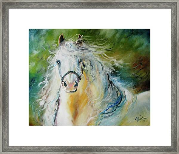 White Cloud The Andalusian Stallion Framed Print