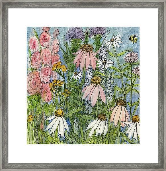 White Coneflowers In Garden Framed Print