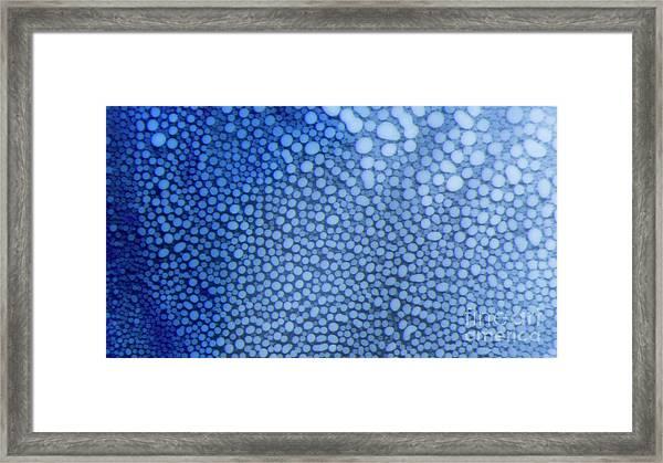 White Dots In Blue Framed Print