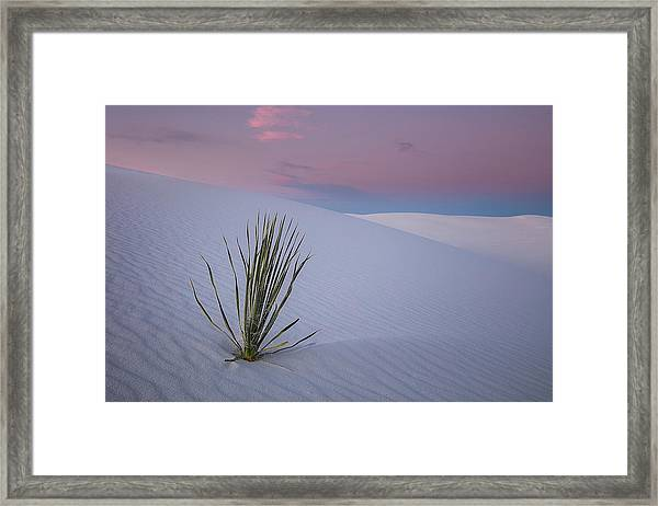 White Dunes Framed Print