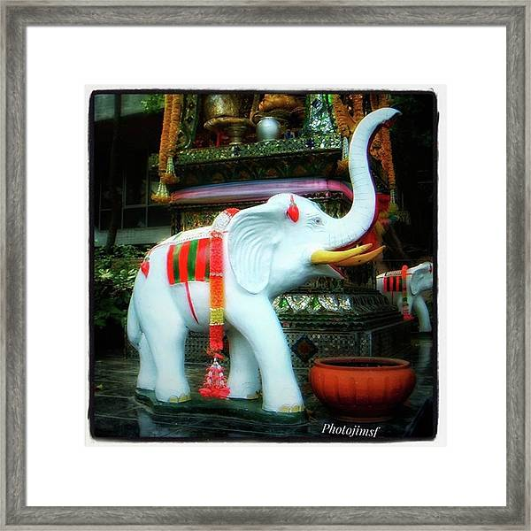 Framed Print featuring the photograph White Elephant. Meaning A Big Expensive by Mr Photojimsf