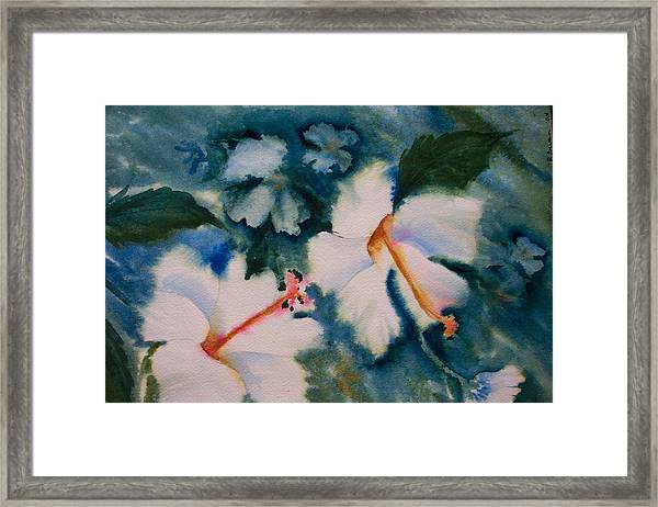 White Hibiscus Framed Print by Ruth Bevan