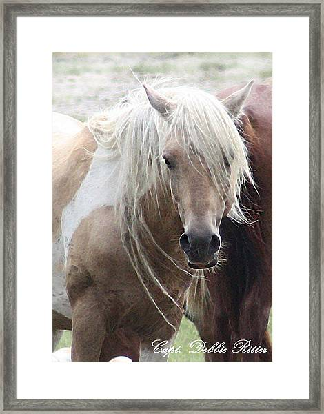 White Lightening Framed Print