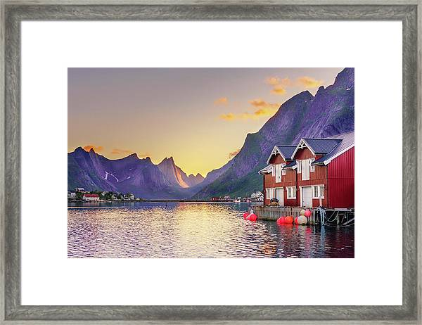 White Night In Reine Framed Print