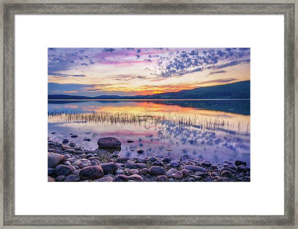 White Night Sunset On A Swedish Lake Framed Print