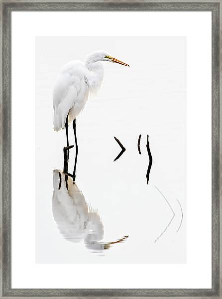 White On White Framed Print