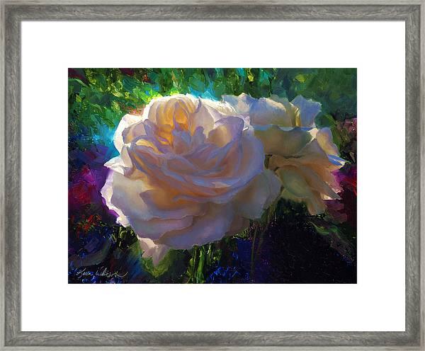 White Roses In The Garden - Backlit Flowers - Summer Rose Framed Print