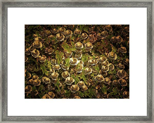 Framed Print featuring the painting White Roses by Jan Keteleer