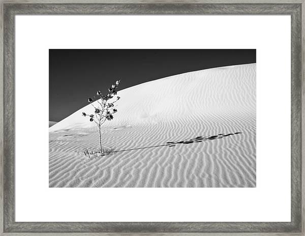 White Sands 4 Framed Print