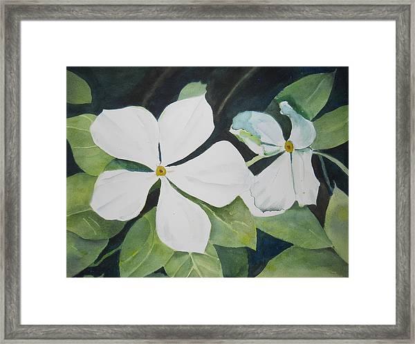 White Wildflowers Framed Print