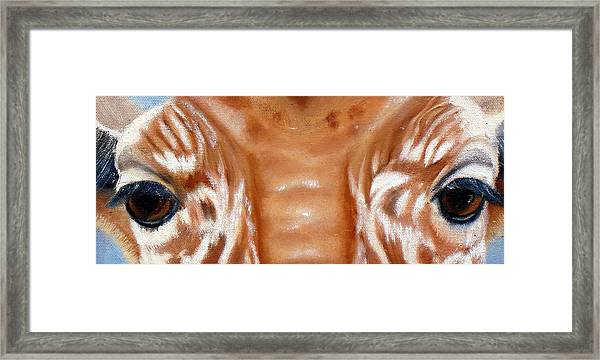 Whos Watching Who   Giraffe Framed Print by Darlene Green