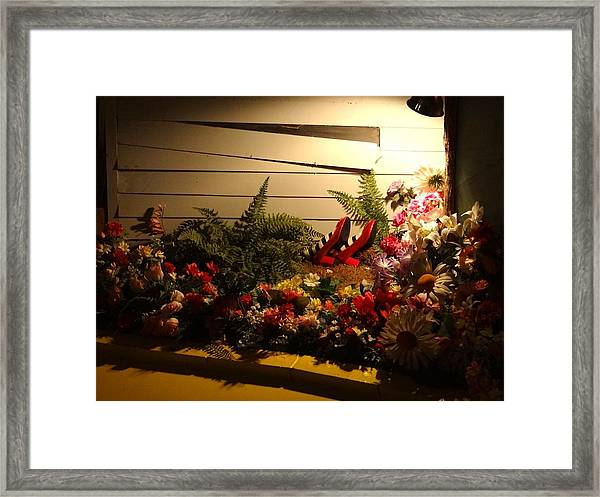 Wicked Witch Of The East's Feet Framed Print