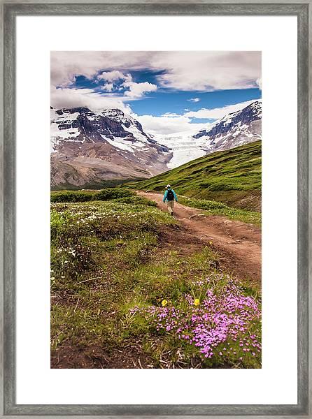 Wilcox Pass Framed Print