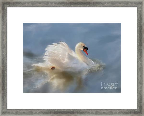 Wild Beauty Painted Framed Print
