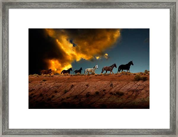 Wild Horses At Sunset Framed Print