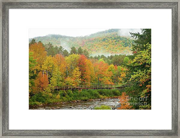 Framed Print featuring the photograph Wild River Bridge by Susan Cole Kelly