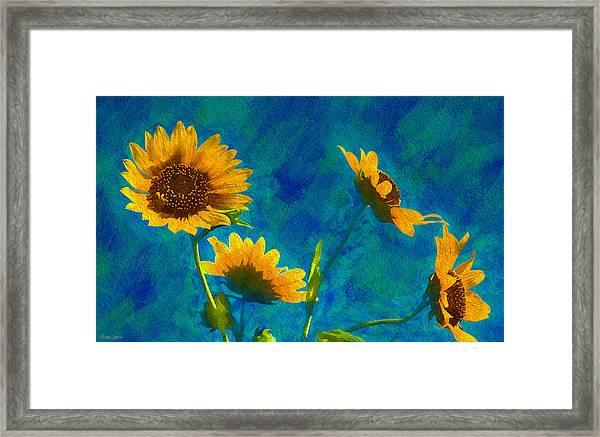 Wild Sunflowers Singing Framed Print