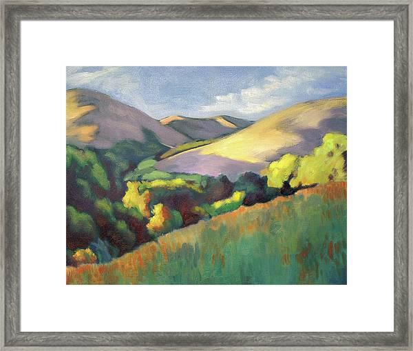 Wildcat Hillside Late Afternoon Framed Print