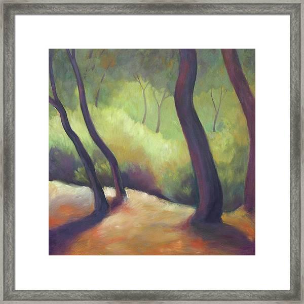 Wildcat Woods Framed Print