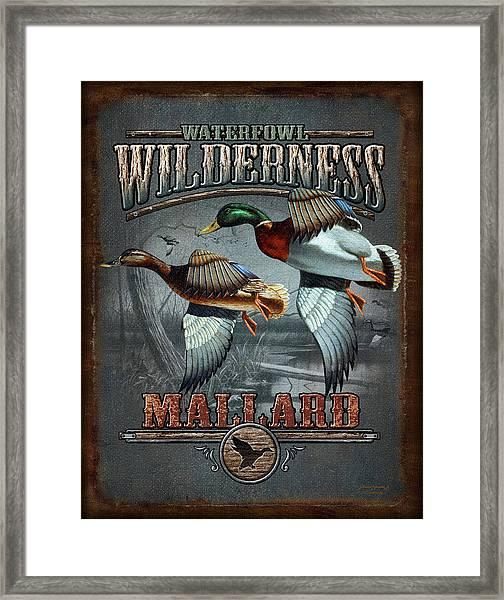 Wilderness Mallard Framed Print