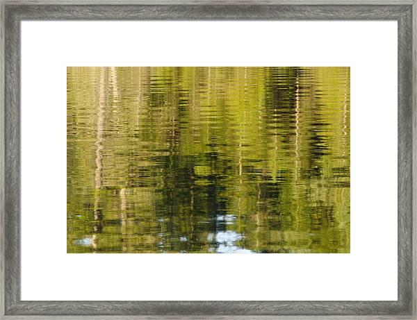 Wilderness Reflections Framed Print