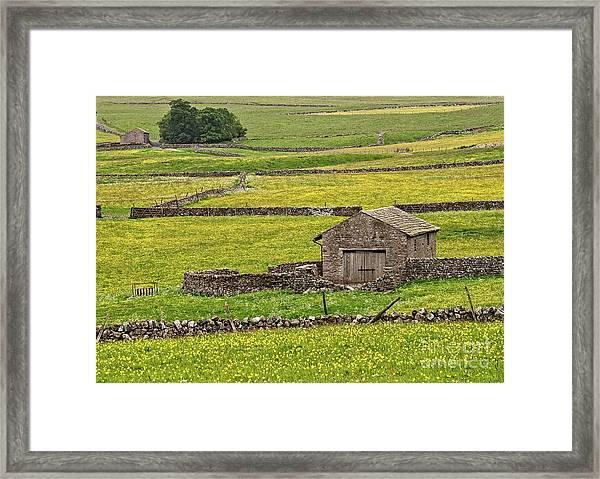 Wildflower Meadows Framed Print