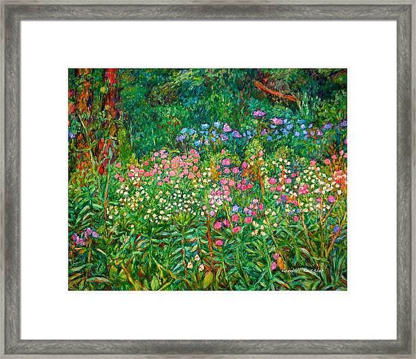 Wildflowers Near Fancy Gap Framed Print