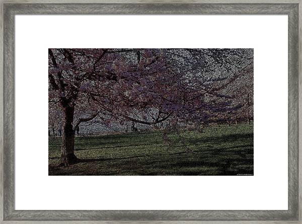 Wildflowers Party Framed Print